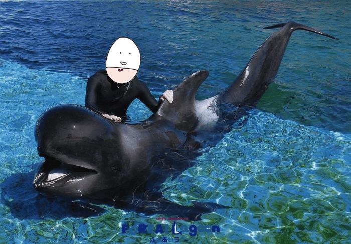 八景島シーパラダイス クジラ