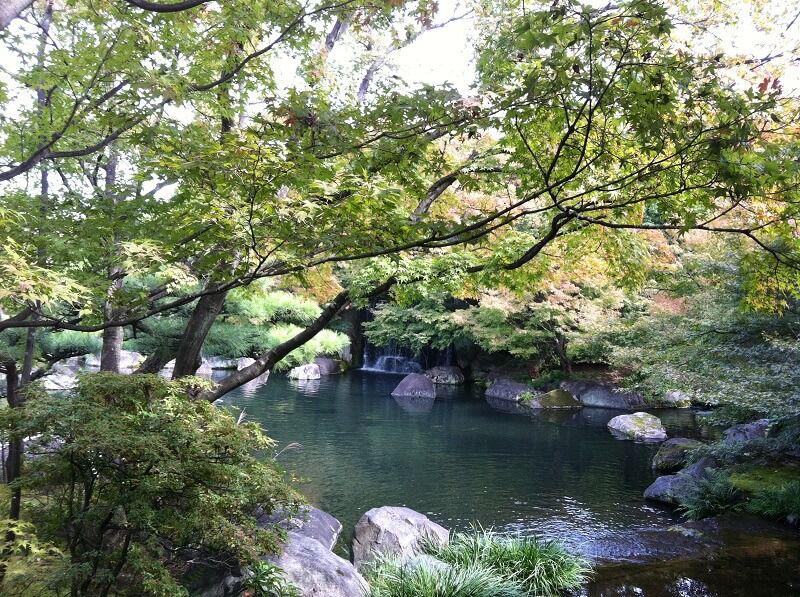 好古園 池