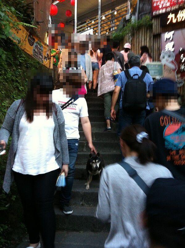 台湾 - 九份_犬2