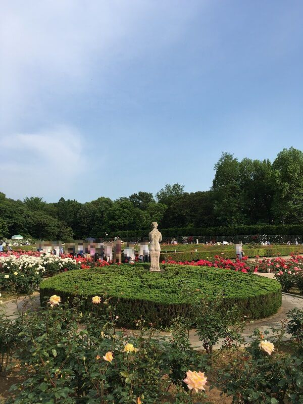 神代植物公園_女とバラ1