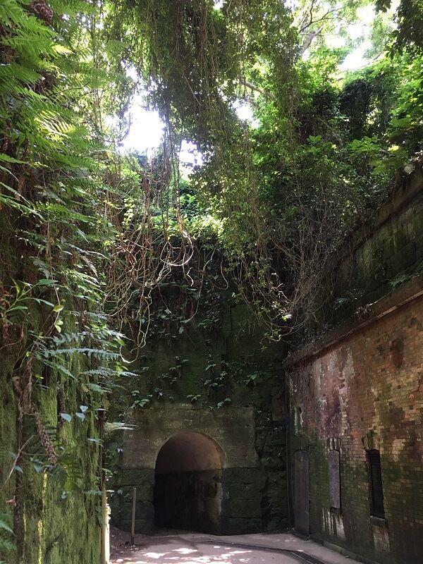 猿島_天空の城ラピュタ1