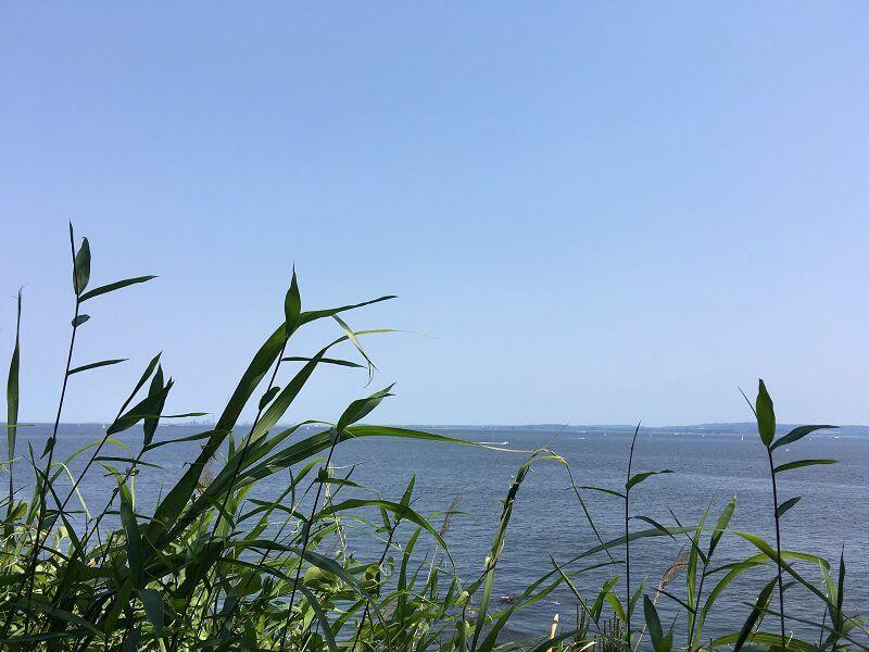 猿島からの眺め2