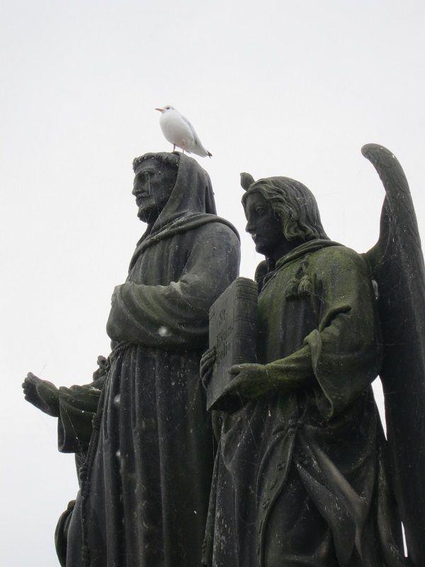 チェコ プラハ カレル橋 鳥3