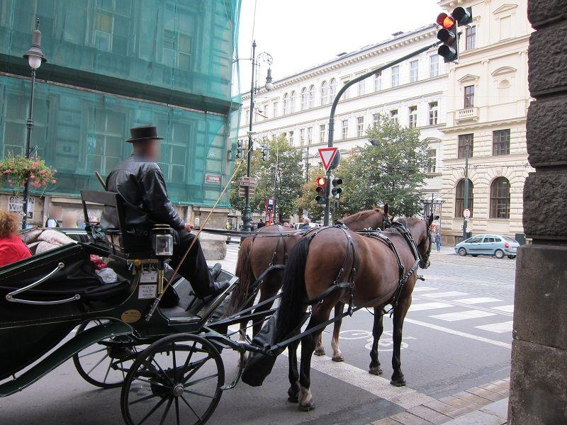 チェコ プラハ 馬車