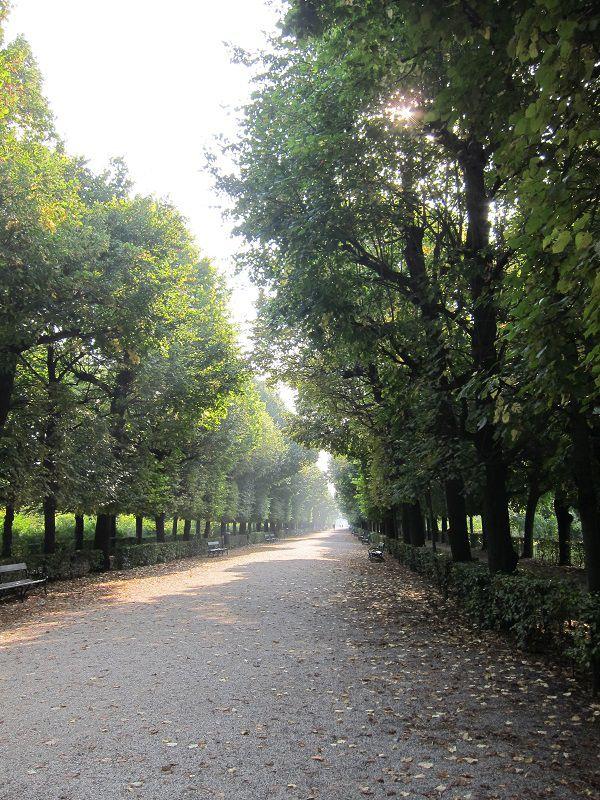 オーストリア ウィーン シェーンブルン宮殿 庭園2