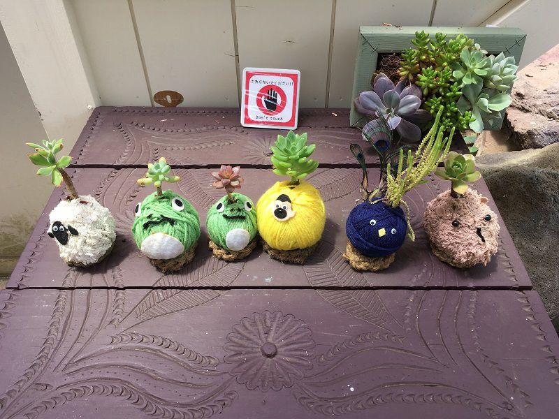 伊豆シャボテン公園 シャボテン温室 植木雑貨