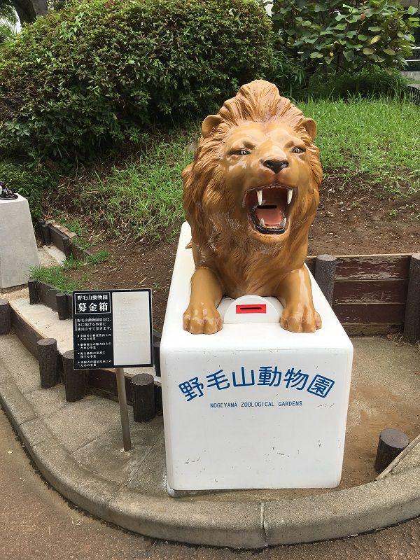野毛山動物園 ライオン募金箱