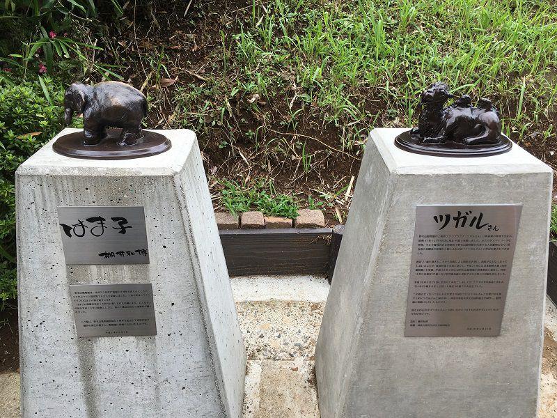 野毛山動物園 はま子の像 ポケストップ