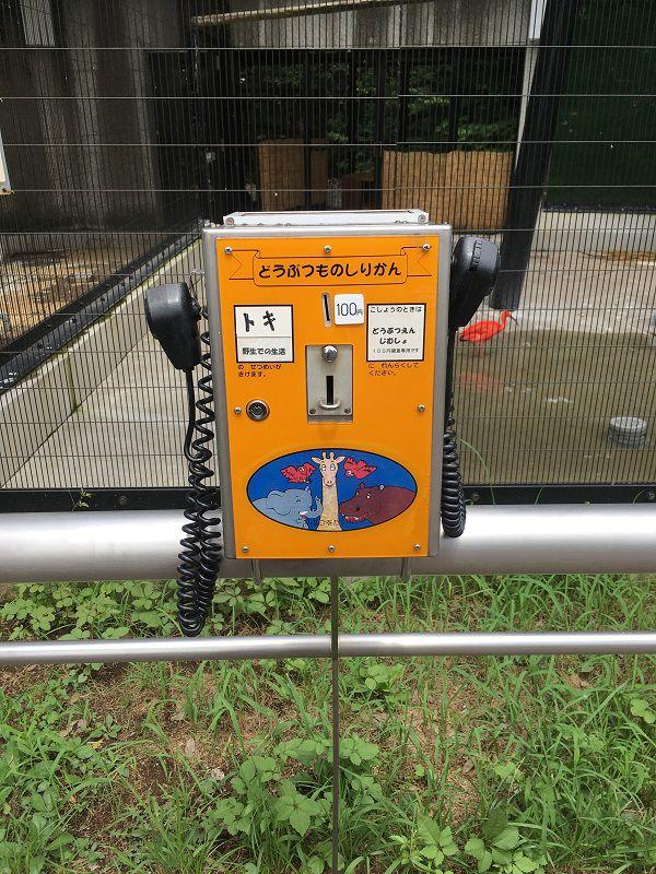 野毛山動物園 説明機械