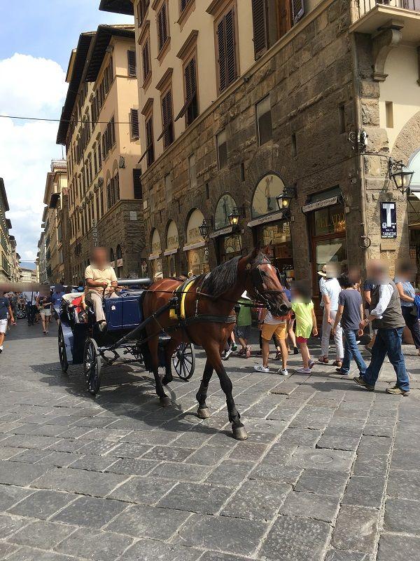 イタリア フィレンツェ 馬車