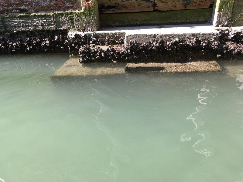 イタリア ヴェネツィア ゴンドラからの眺め 水路の水