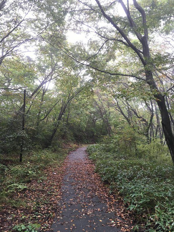 伊香保温泉 上ノ山公園 伊香保神社への遊歩道2
