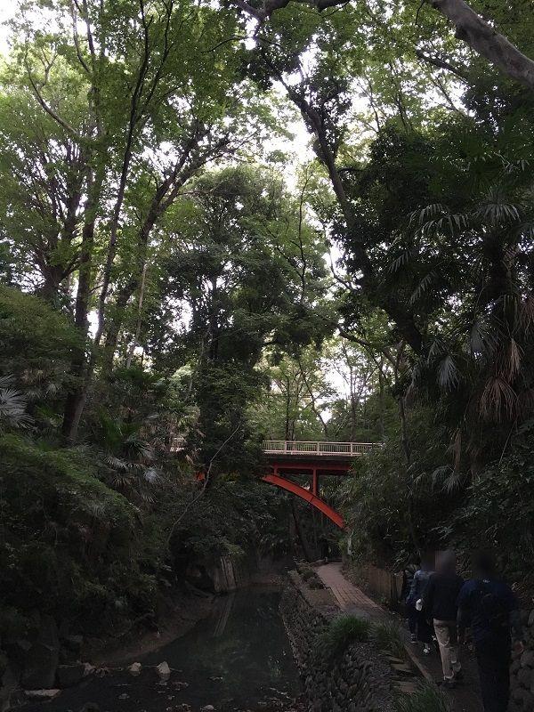 等々力渓谷 ゴルフ橋1