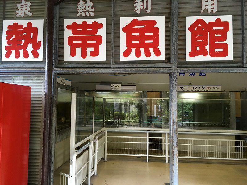 別府温泉 白池地獄 熱帯魚館