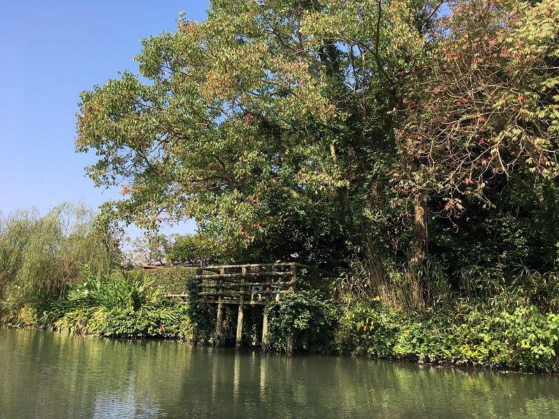 柳川 川下り4