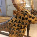 男一人でエジプト考古学博物館を観覧してきた in エジプト