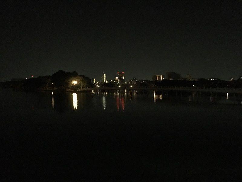 博多 大濠公園 夜 池