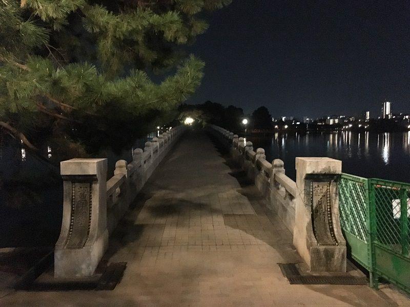 博多 大濠公園 夜 橋