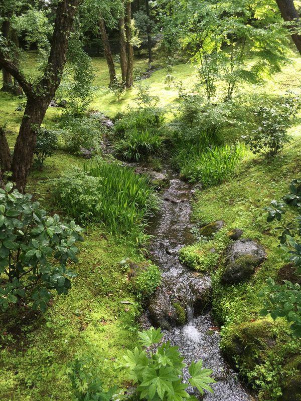 成田山新勝寺 成田山公園 小川