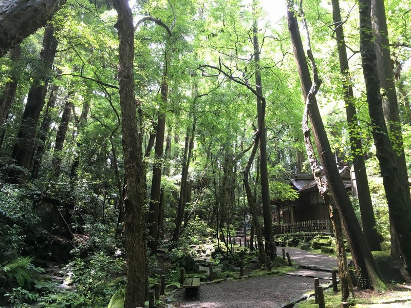 成田山新勝寺 成田山公園