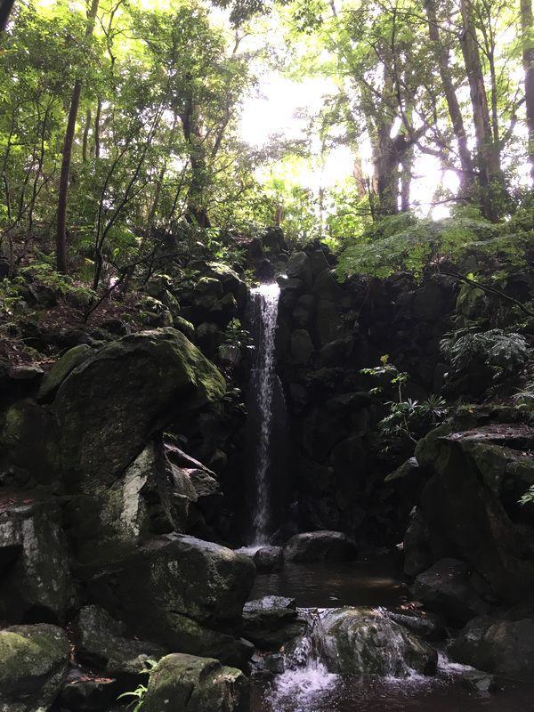 成田山新勝寺 成田山公園 雄飛の滝
