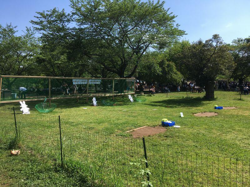 成田ゆめ牧場 ターゲットディスク フリスビー