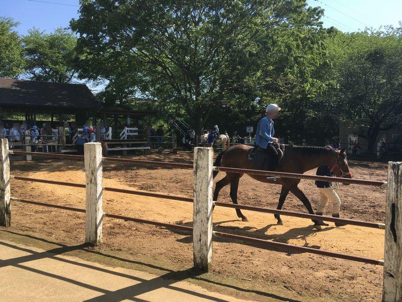 成田ゆめ牧場 乗馬