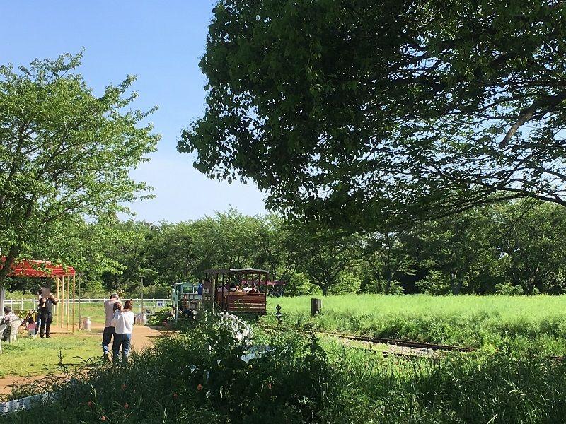 成田ゆめ牧場 トロッコ列車
