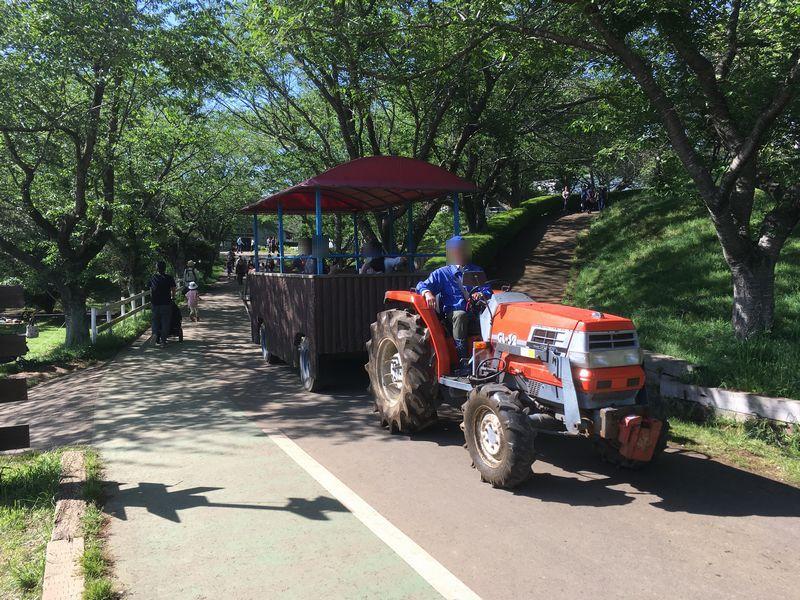 成田ゆめ牧場 トラクター遊覧