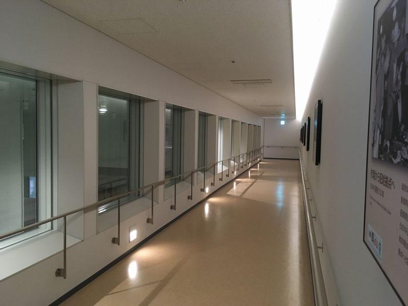 豊洲市場 水産卸売場棟 廊下 通路