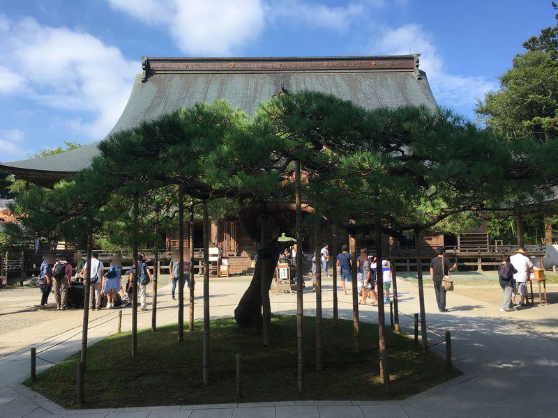 平泉 中尊寺 本堂