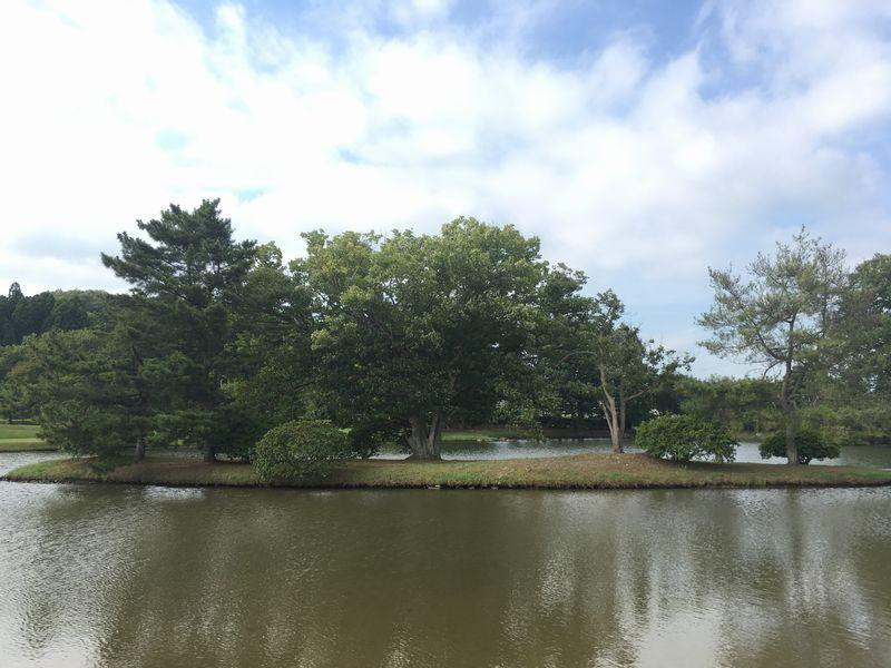 平泉 観自在王院跡 舞鶴が池