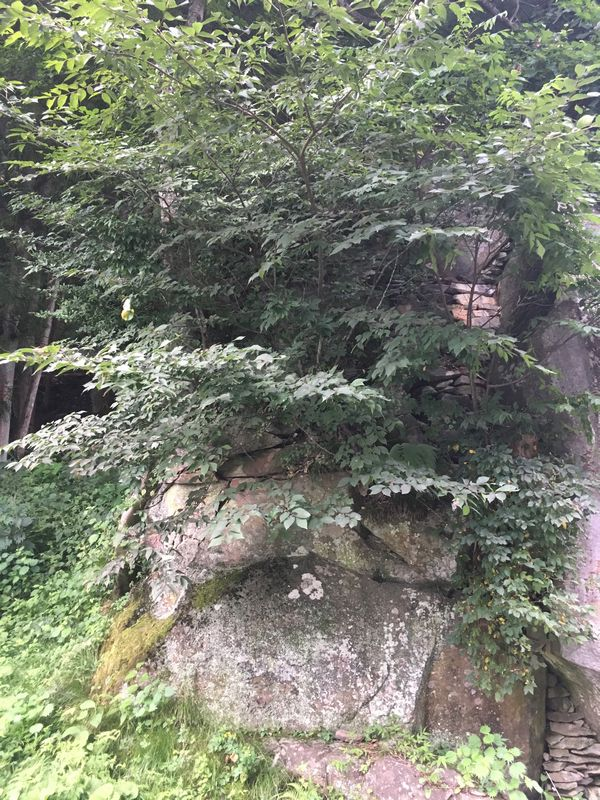 平泉 達谷窟毘沙門堂 髢石