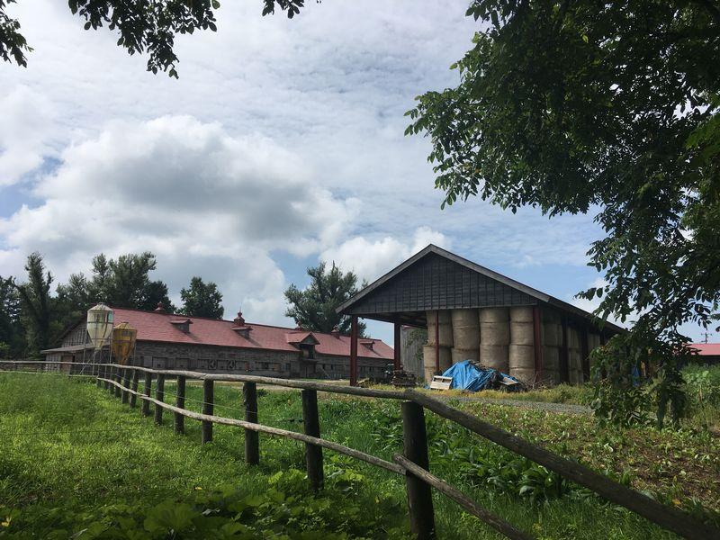小岩井農場 上丸牛舎 牧草ロール 麦稈ロール