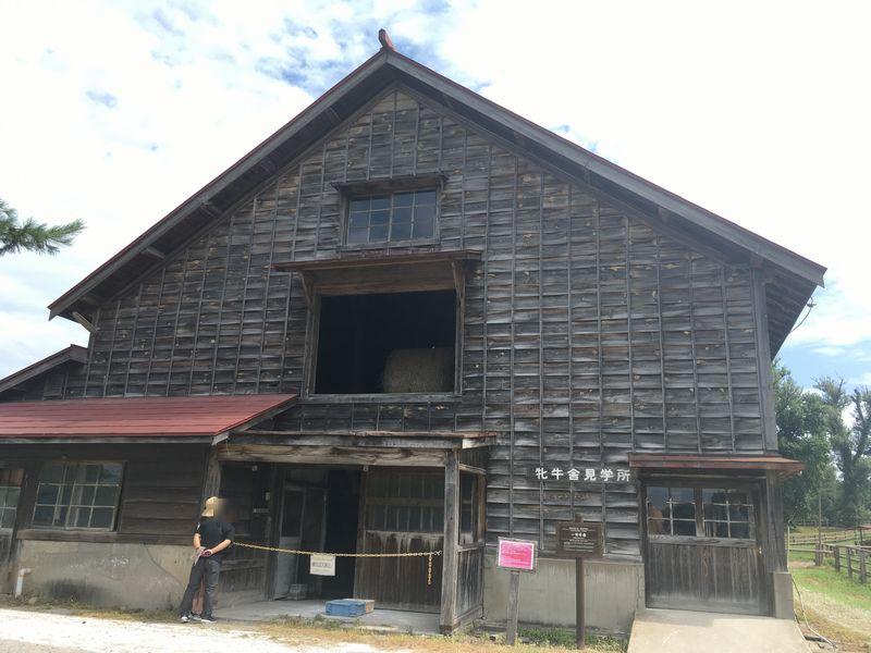 小岩井農場 上丸牛舎 一号牛舎 牝牛舎見学所