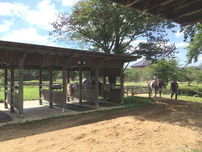 小岩井農場 乗馬