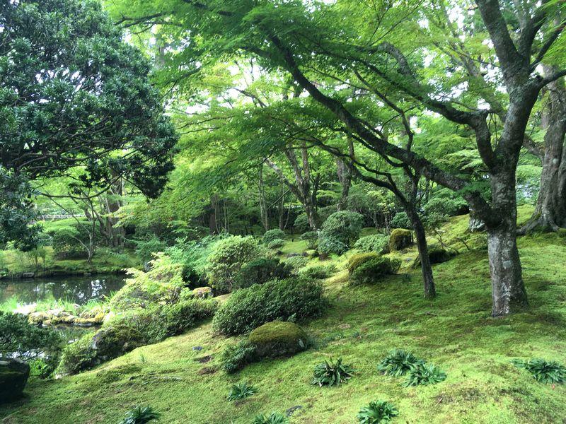 松島 円通院 庭園