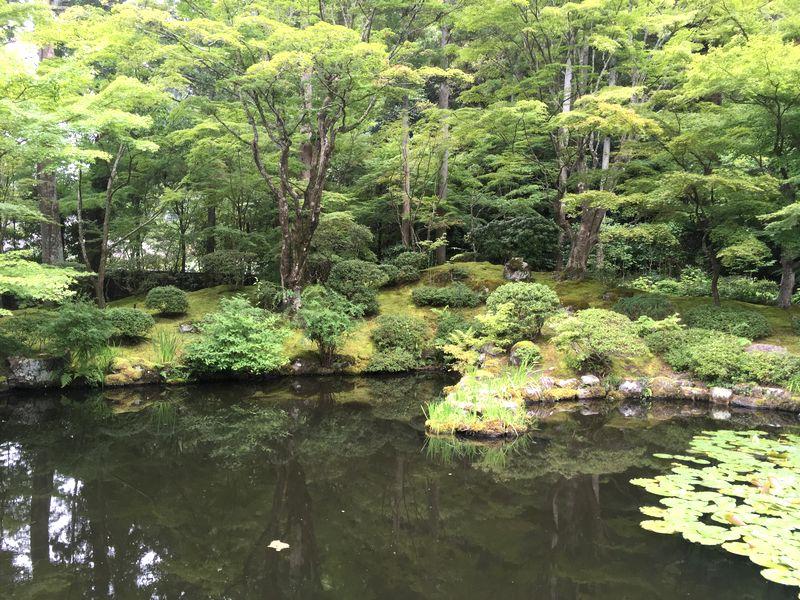 松島 円通院 庭園 遠州の庭 心字の池