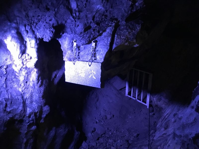 龍泉洞 鍾乳洞 蝙蝠穴