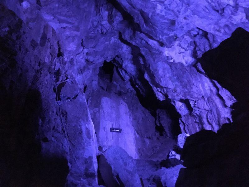 龍泉洞 鍾乳洞 白亜の議事堂