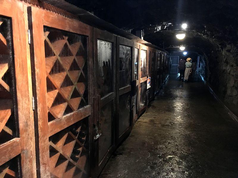 龍泉洞 鍾乳洞 トンネル 出口 山ぶどうワイン 宇霊羅 貯蔵庫