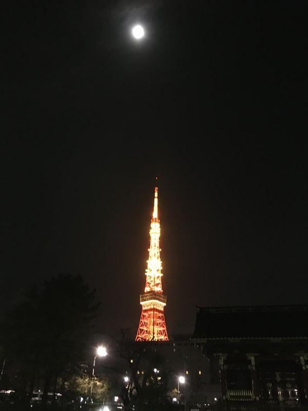 東京タワー 月 夜