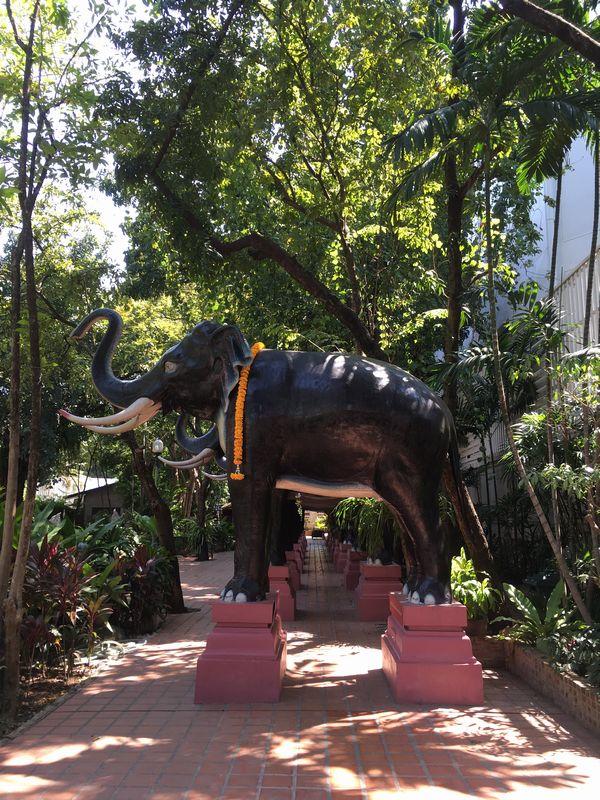 タイ エラワンミュージアム 象 鳴き声 センサー