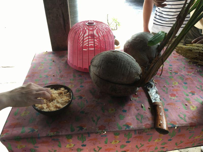 タイ ココナッツファーム