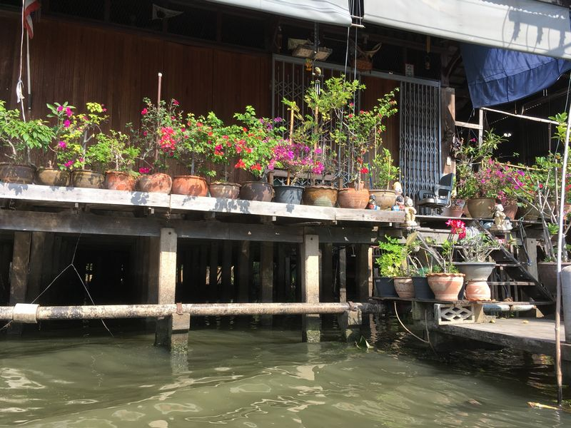 タイ 水上マーケット エンジンボート 植木鉢 川 運河 水路