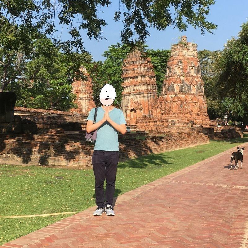 タイ アユタヤ遺跡 ワット・マハタート クメール様式 仏塔 犬