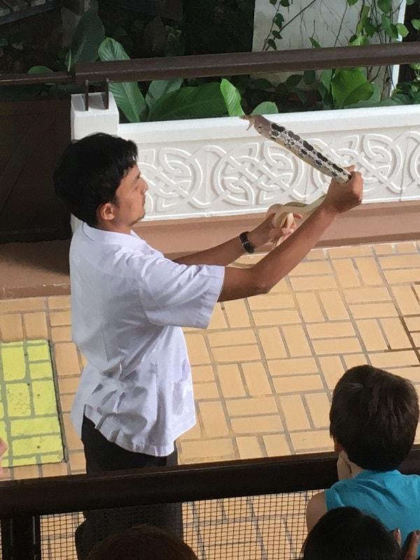 タイ バンコク スネークファーム SNAKE FARM Snake handling show ヘビ ショー