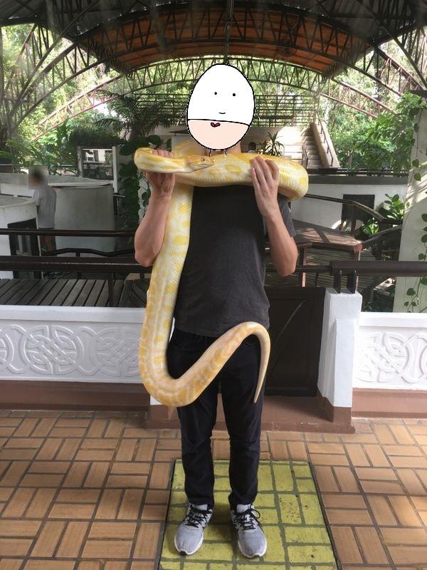 タイ バンコク スネークファーム SNAKE FARM Snake handling show ヘビ ショー 写真撮影