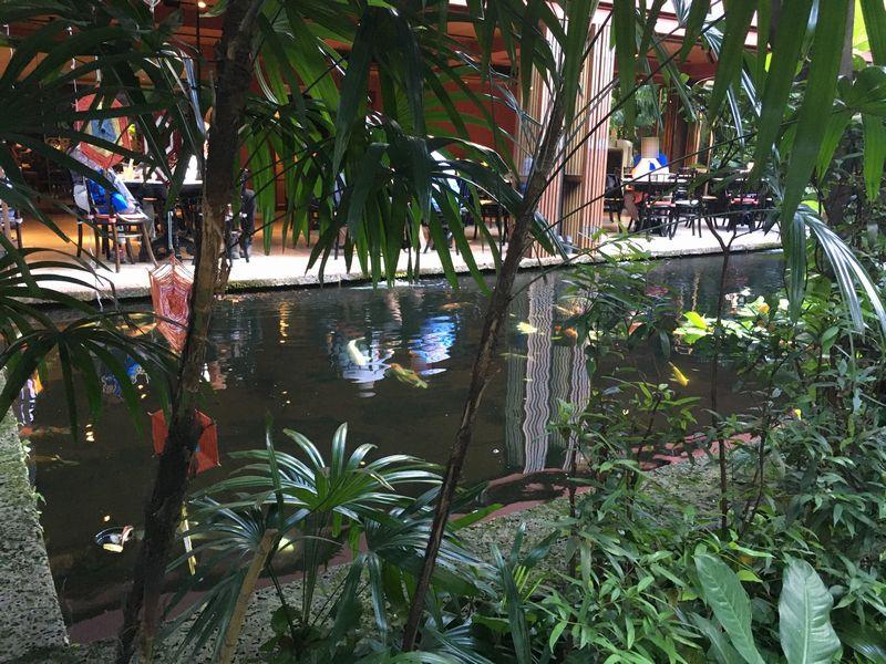 タイ バンコク ジム・トンプソンの家 レストラン 池