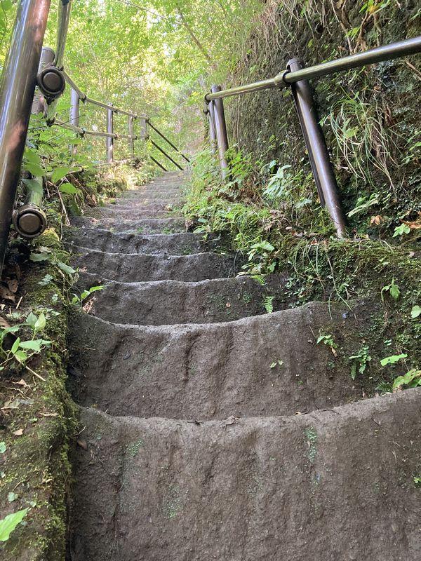 鋸山 登山道 階段